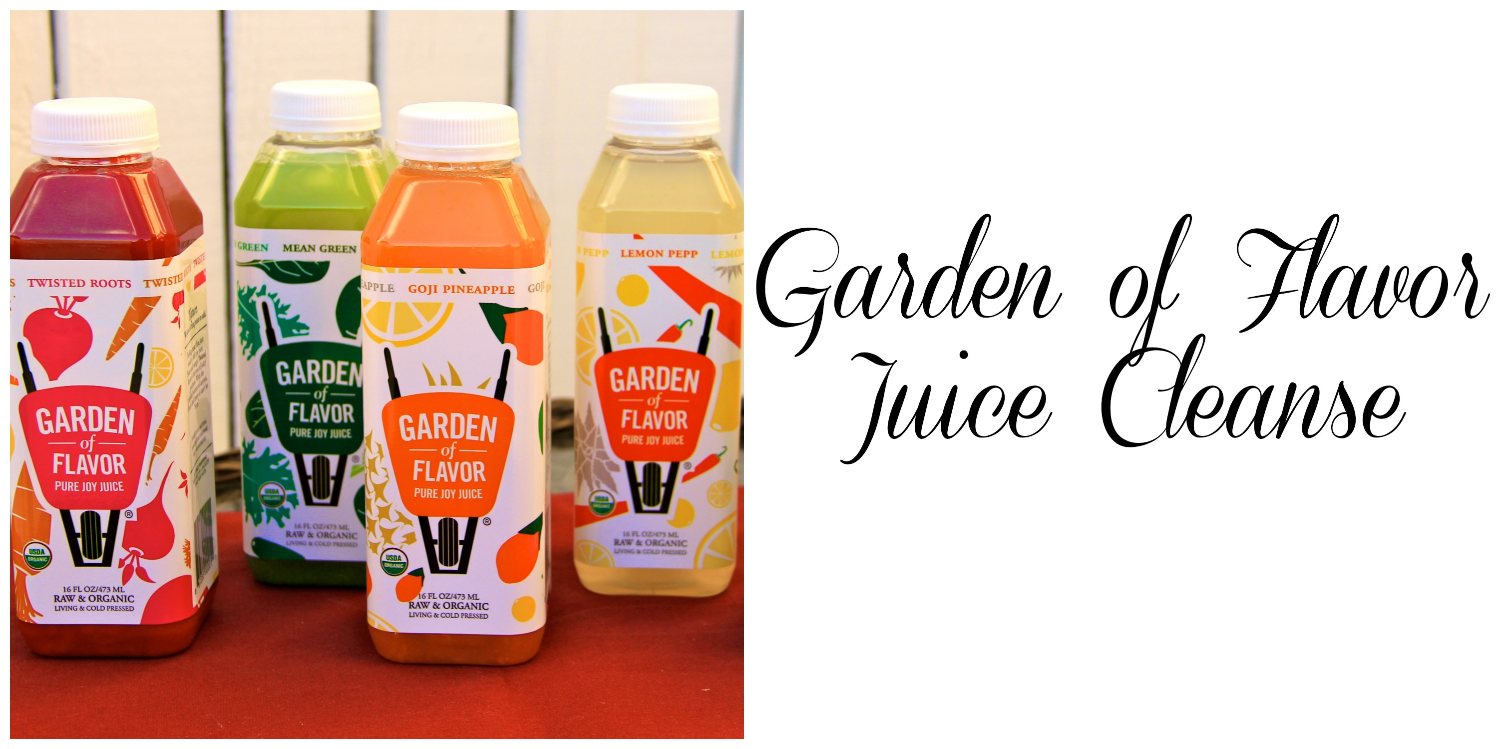 Garden of Flavor Juice Cleanse | girl about columbus