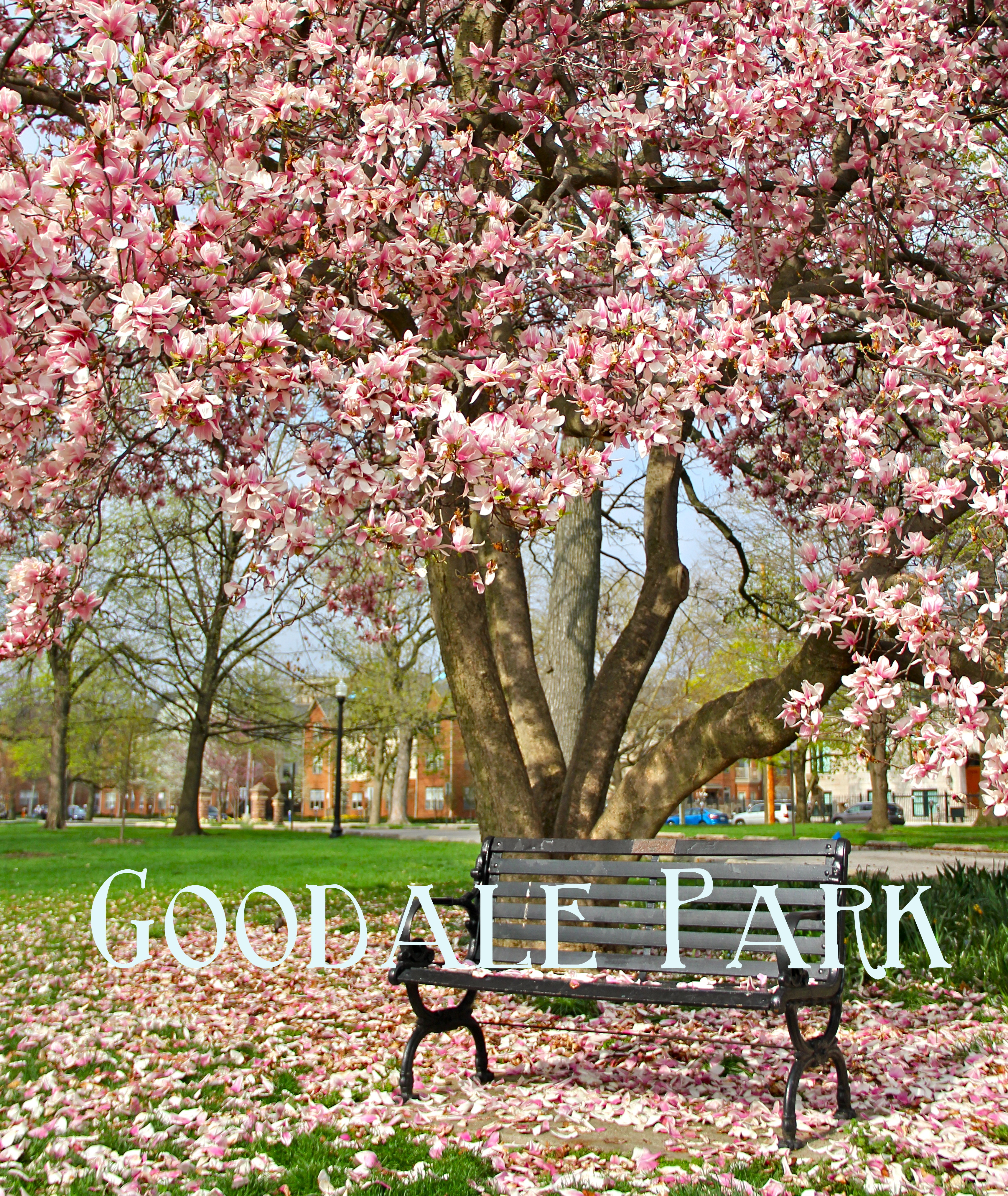 Goodale Park | Girl About Columbus