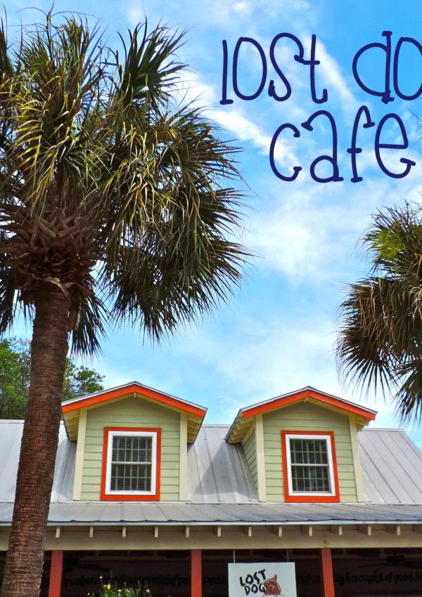 Lost Dog Cafe – Folly Beach, SC