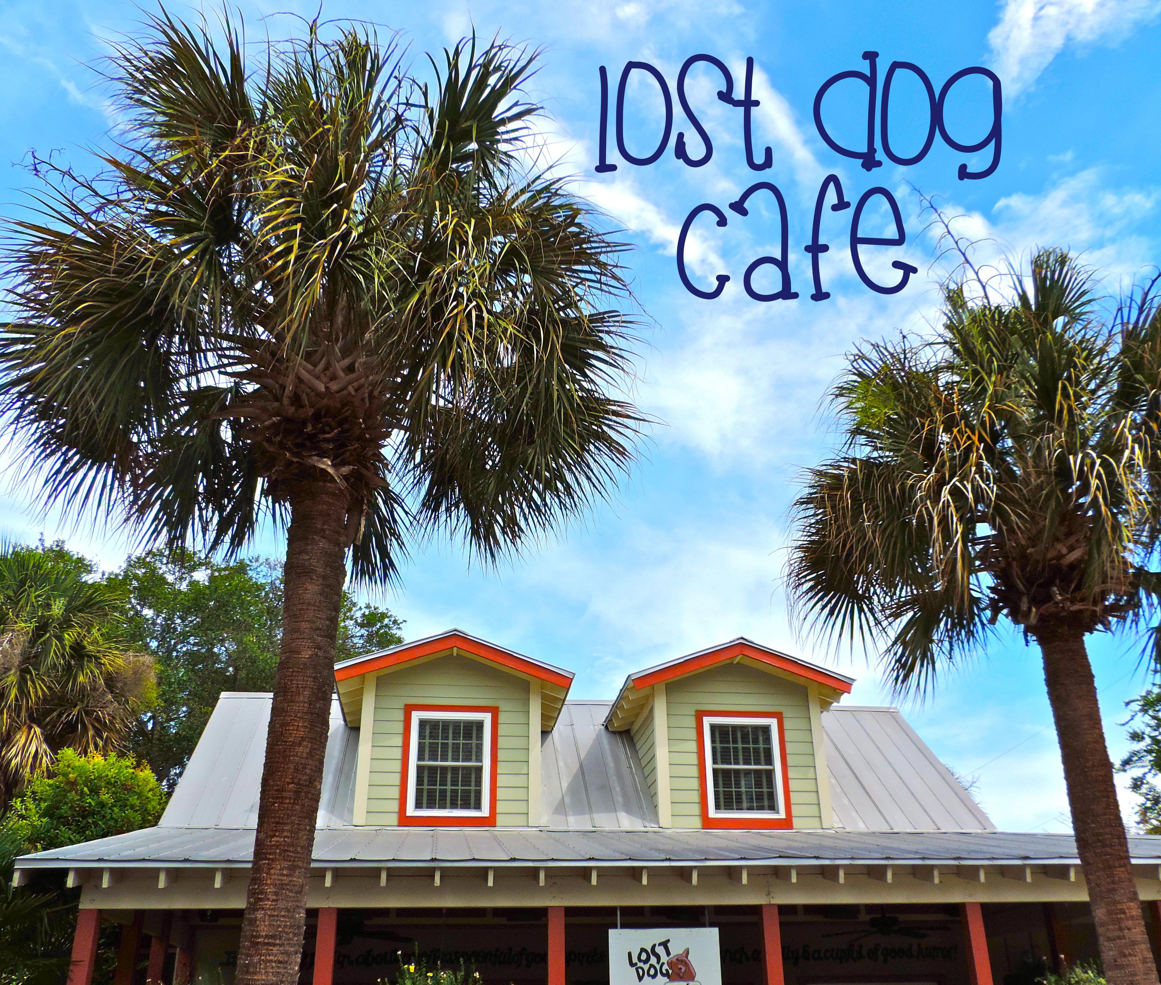 Lost_Dog_Cafe_Folly_Beach_South_Carolina