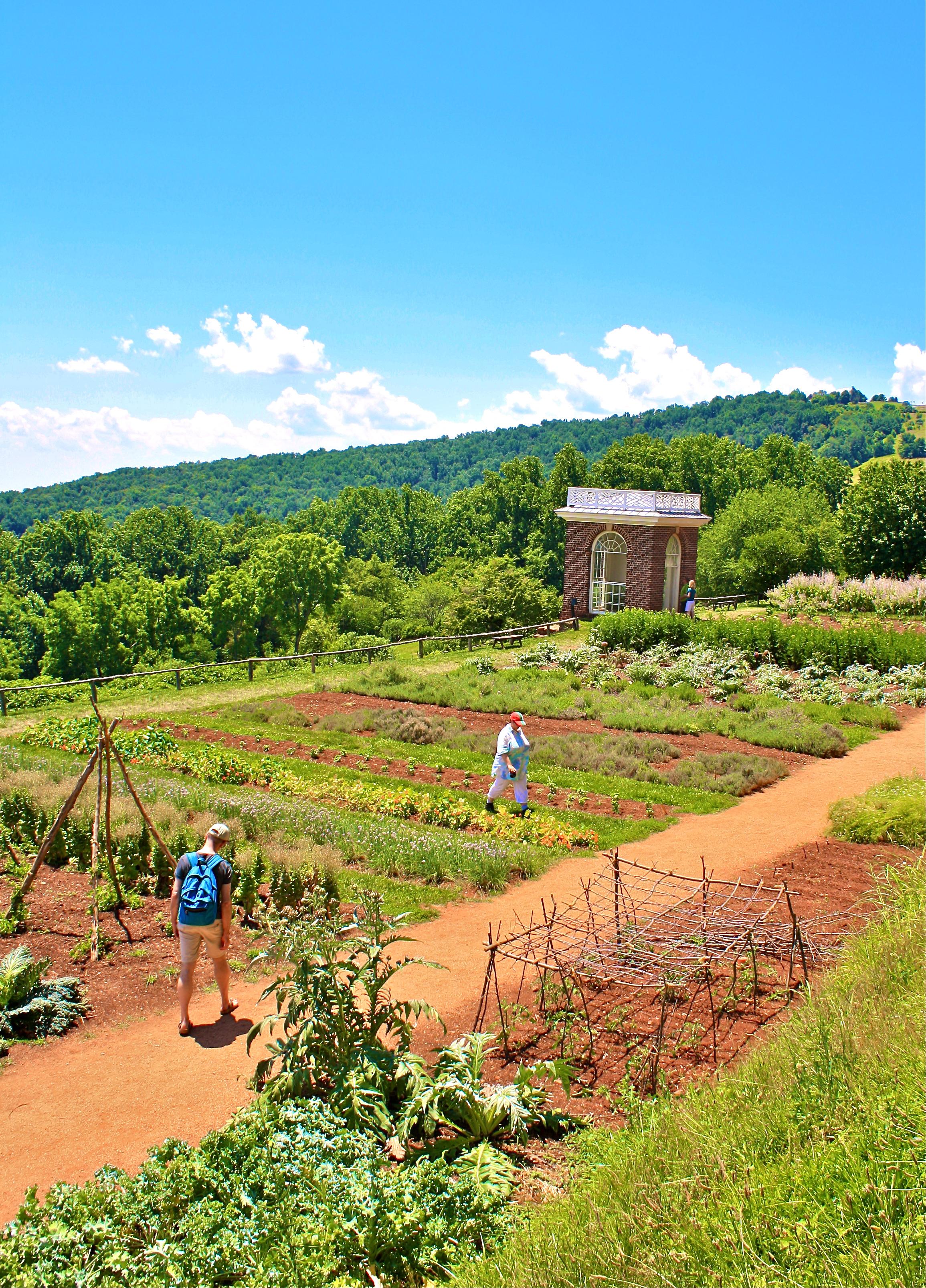 Monticello Charlottesville