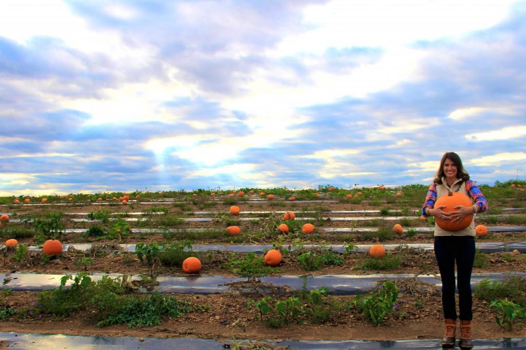 Renick's Pumpkin Patch   girl about columbus
