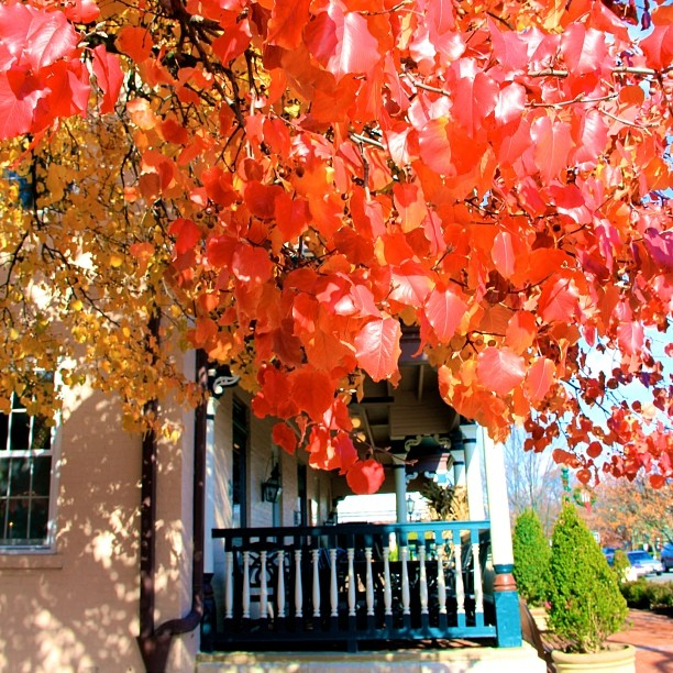 fall_worthington_inn_worthington_ohio