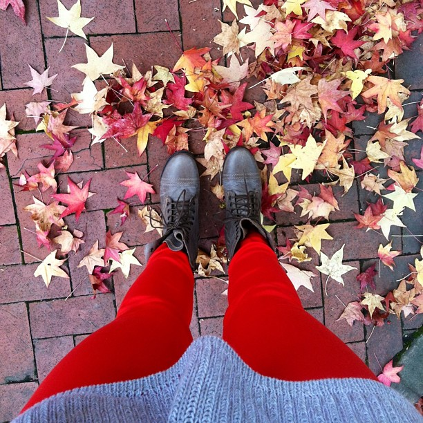 scarlet_gray_fall_columbus_ohio_ohiostate
