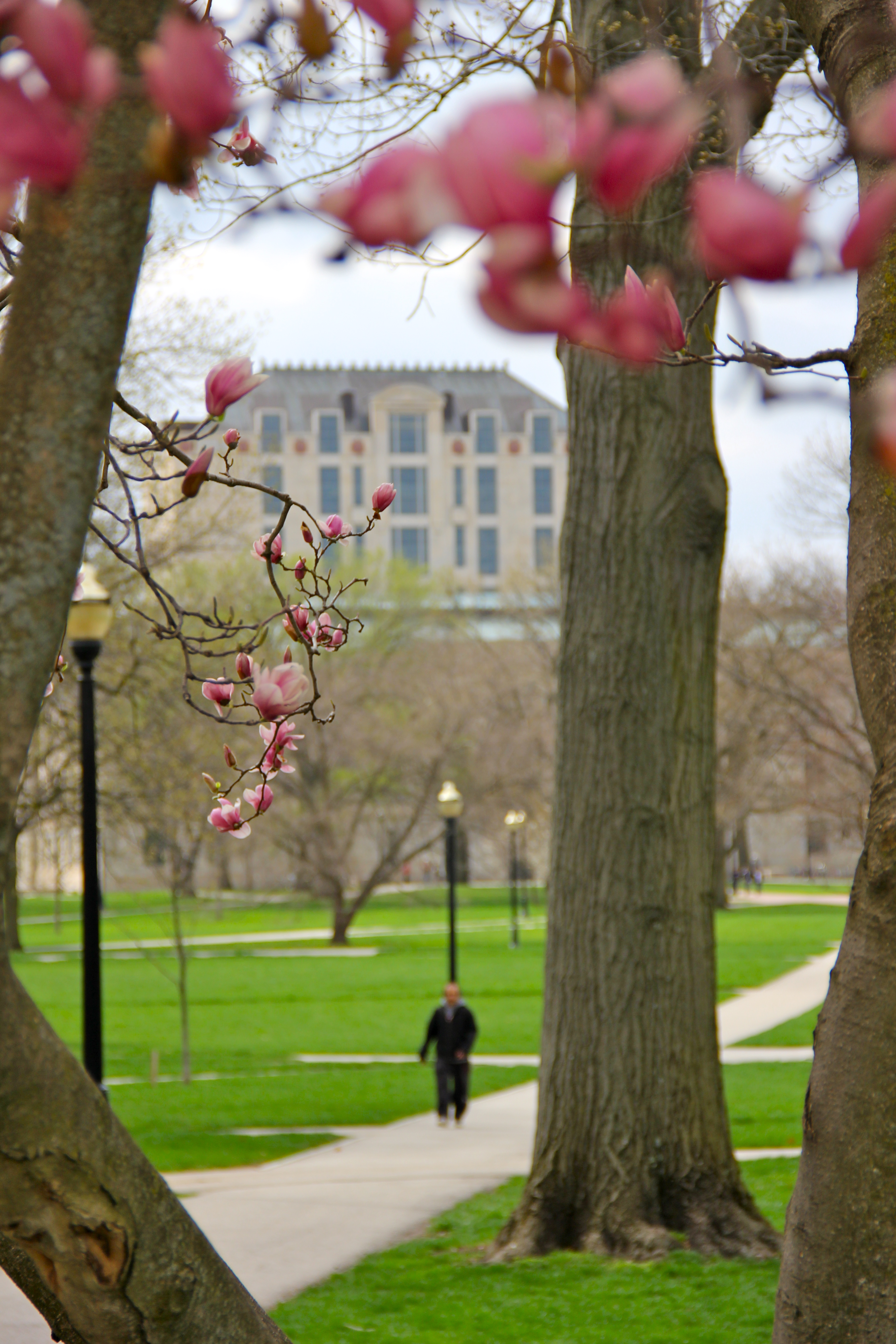 girl_about_columbus_ohio_state_campus