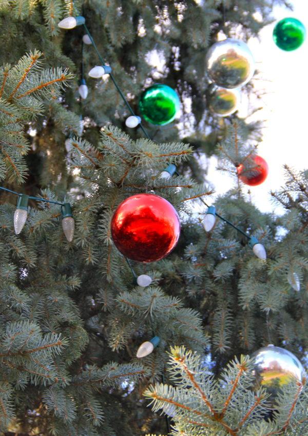 worthington_ohio_tree_girl_about_columbus