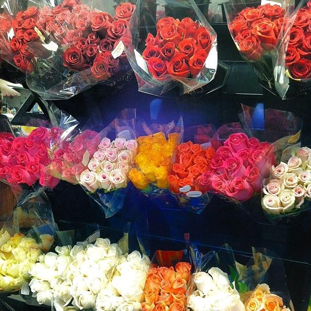 kroger-roses-columbus-ohio
