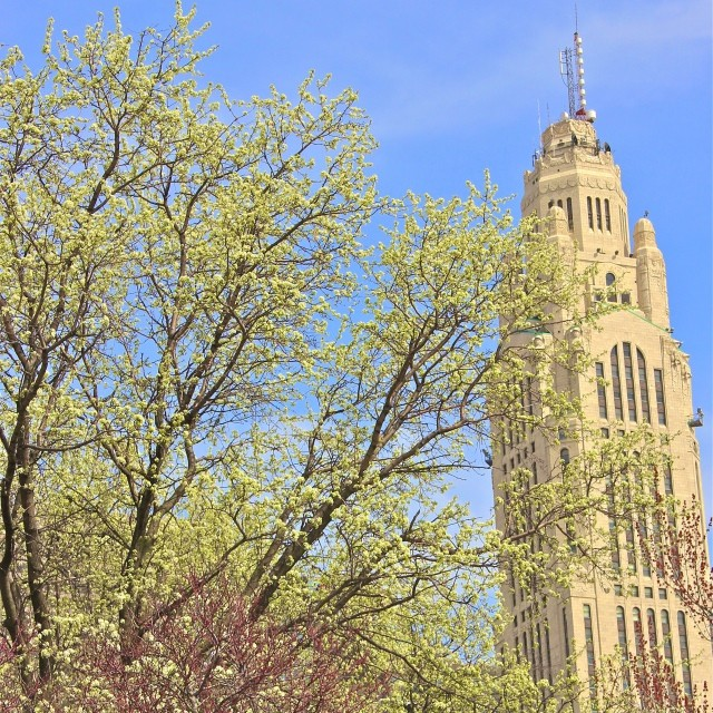 leveque-tower-columbus-ohio-spring