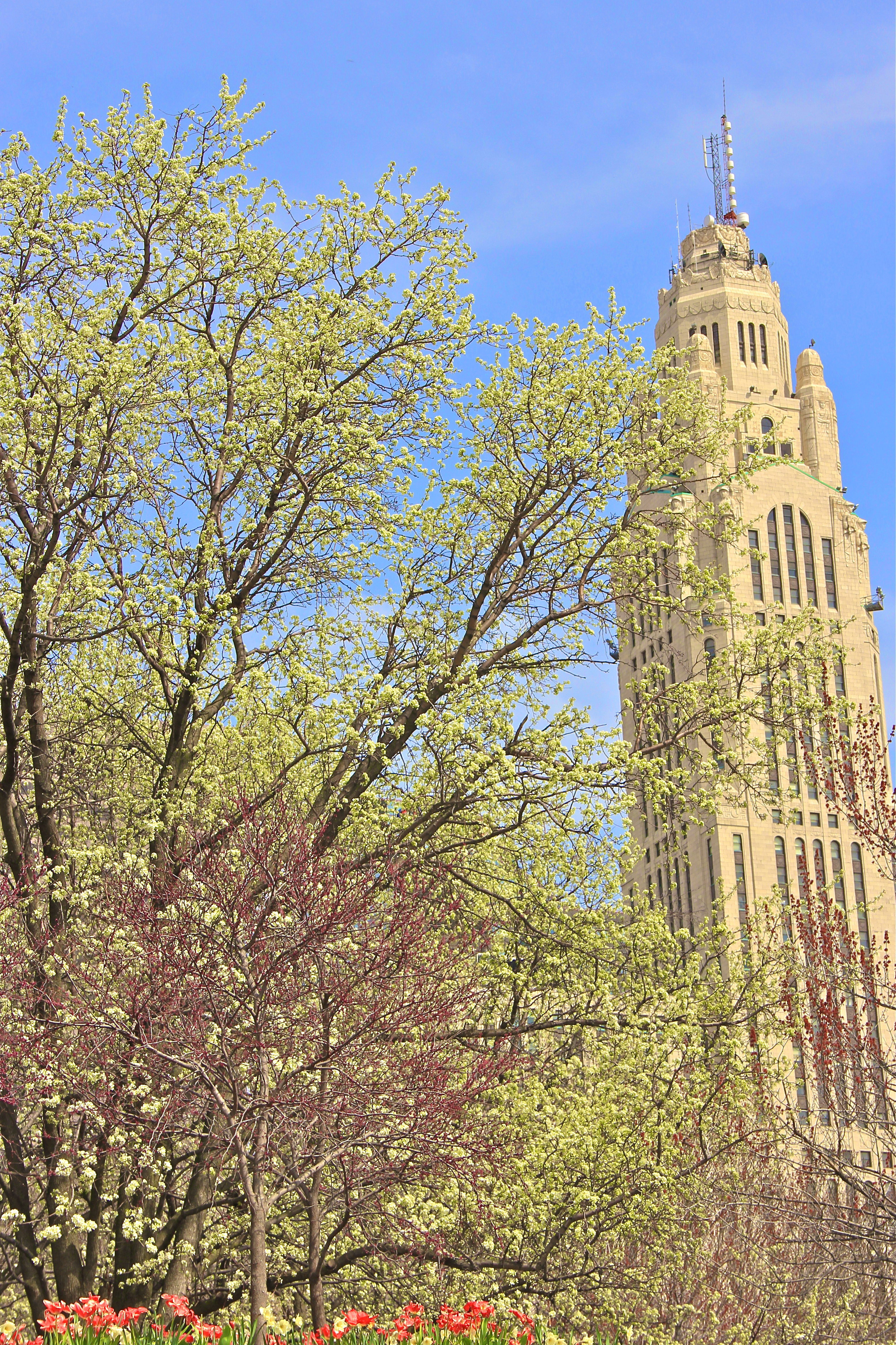 Leveque Tower | Springtime | girl about columbus
