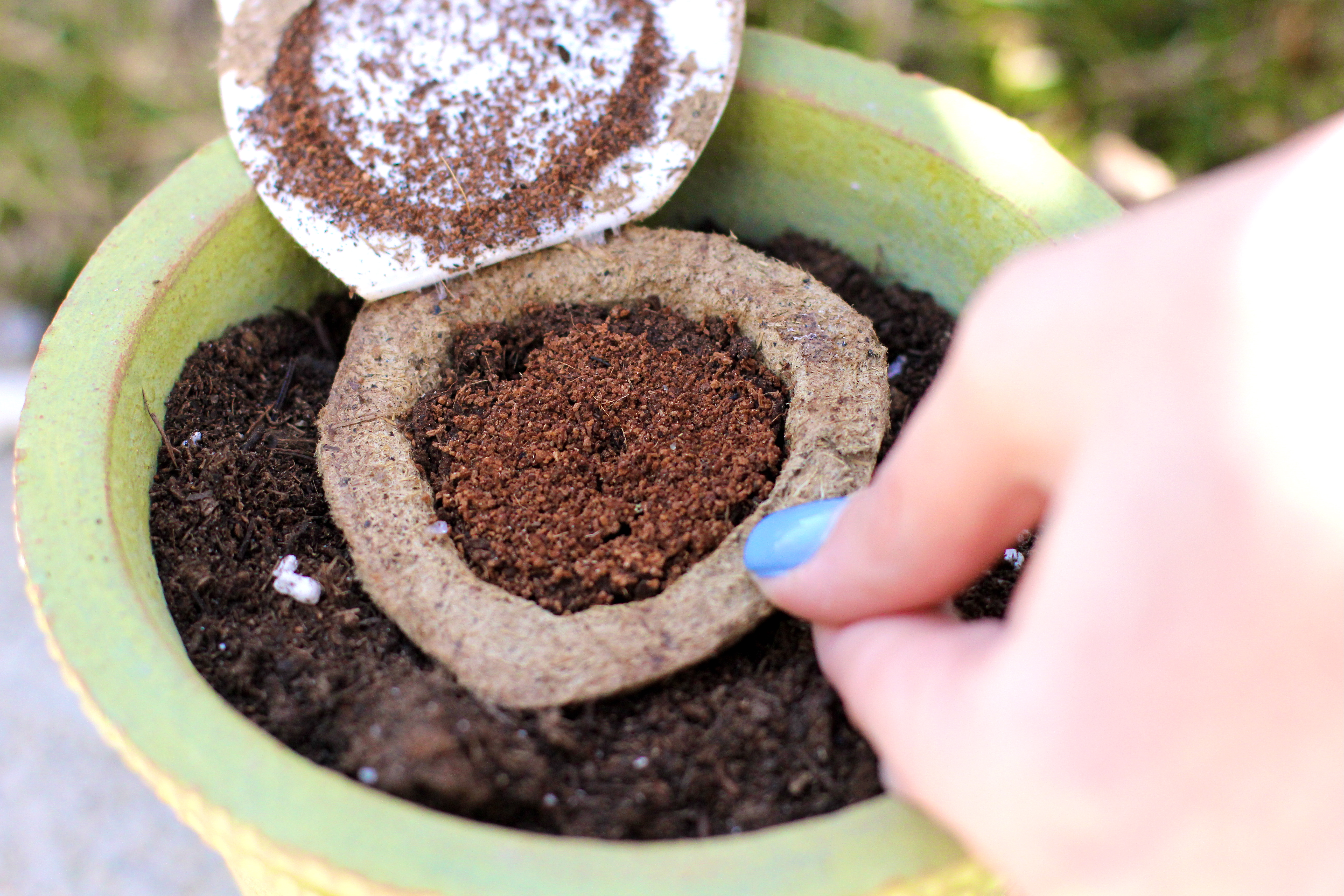 how-to-start-a-garden-girl-about-columbus
