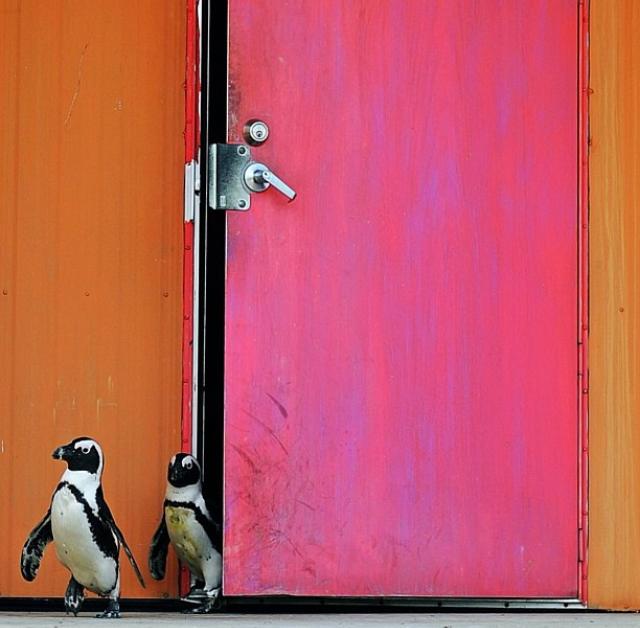 Columbus Zoo |Tizara | Columbus Instagram