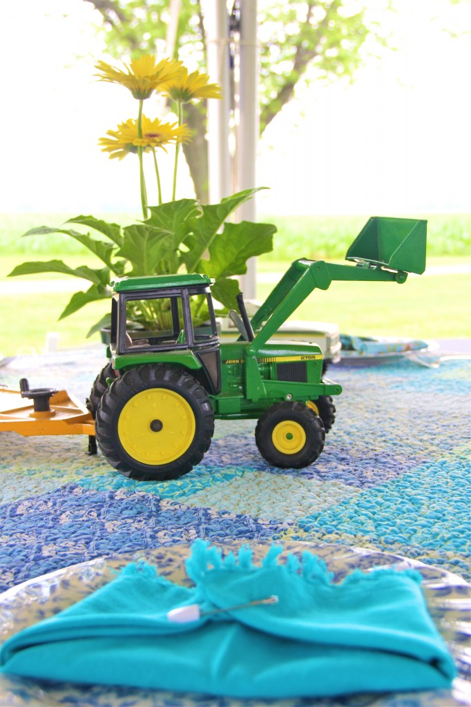 baby shower idea: on the farm