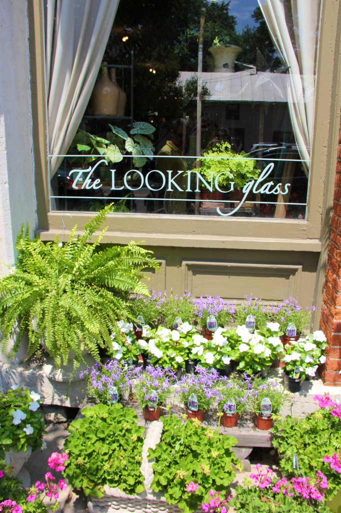 The Looking Glass | Waynesville, Ohio