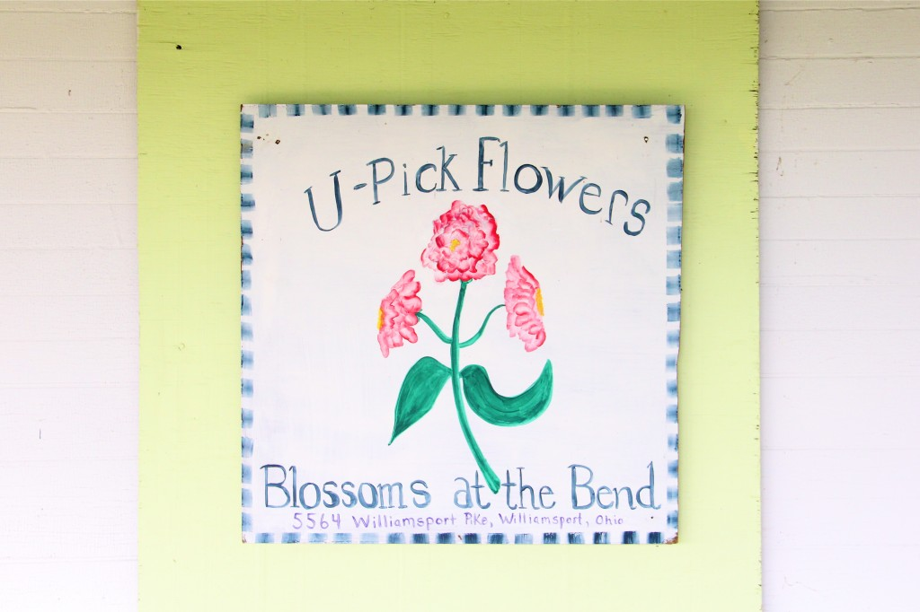 U-Pick Flowers | Blossoms at the Bend | Williamsport, Ohio