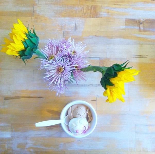 jenis-ice-cream-columbus-ohio
