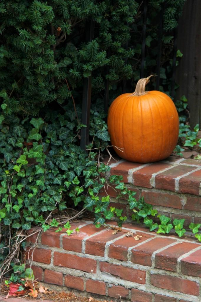pumpkin_front_steps_fall