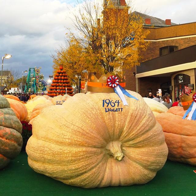 circleville-pumpkin-show-pumpkin-winner-october-2014