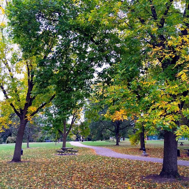 fall-foilage-schiller-park-german-village