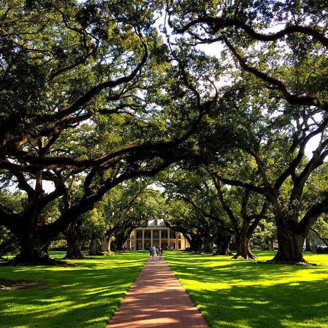 oak-alley-plantation-new-orleans-louisiana