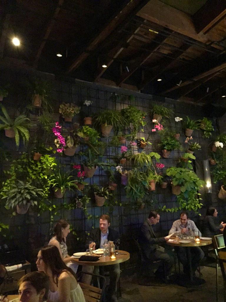 prato-plant-wall-winter-park-florida