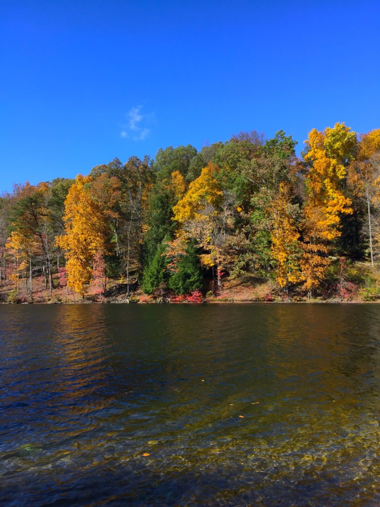 rose-lake-hocking-hills