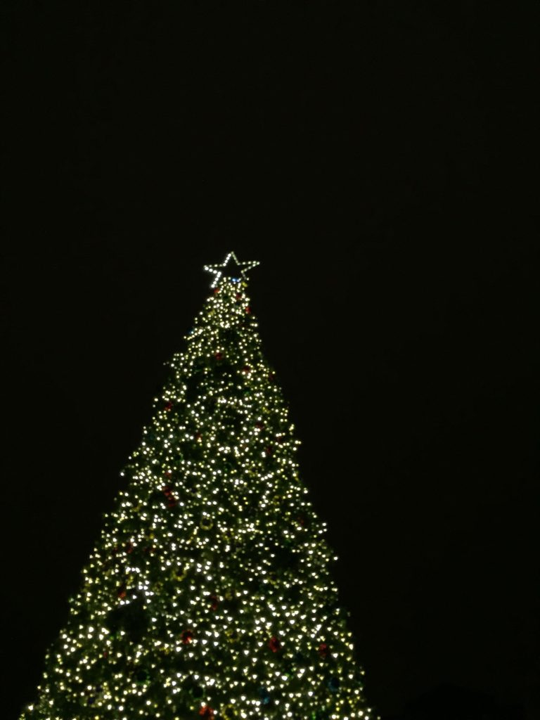 columbus-commons-christmas-tree