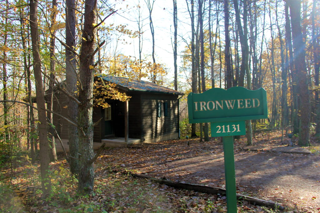 ironweed-cottage-inn-at-cedar-falls