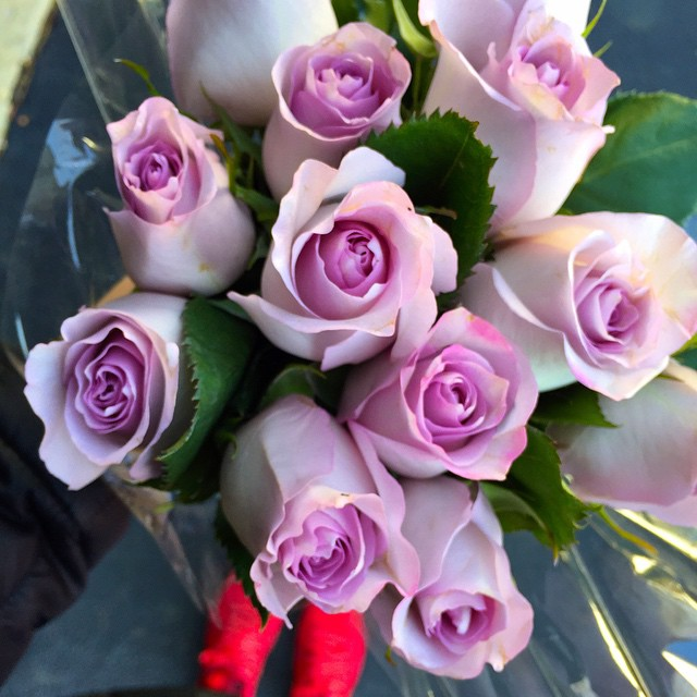 new-year-roses