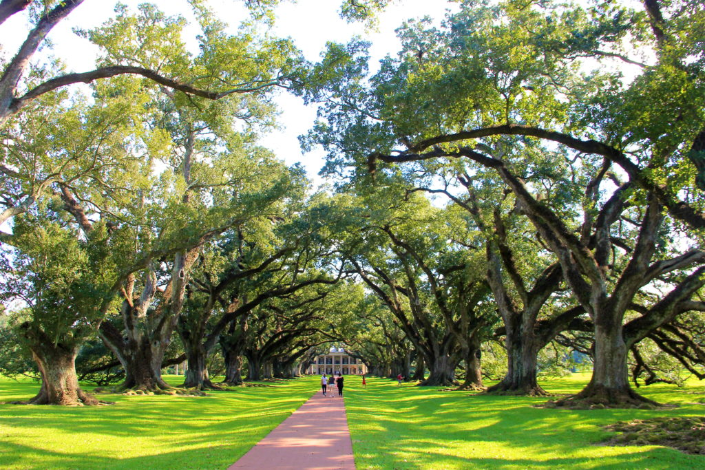 oak-alley-plantation-louisiana
