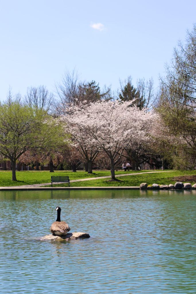 goodale-park-columbus-ohio