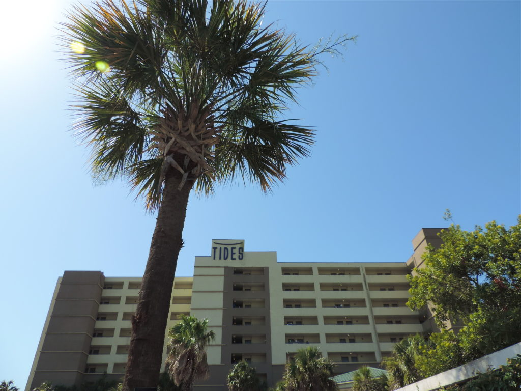 folly-beach-hotel