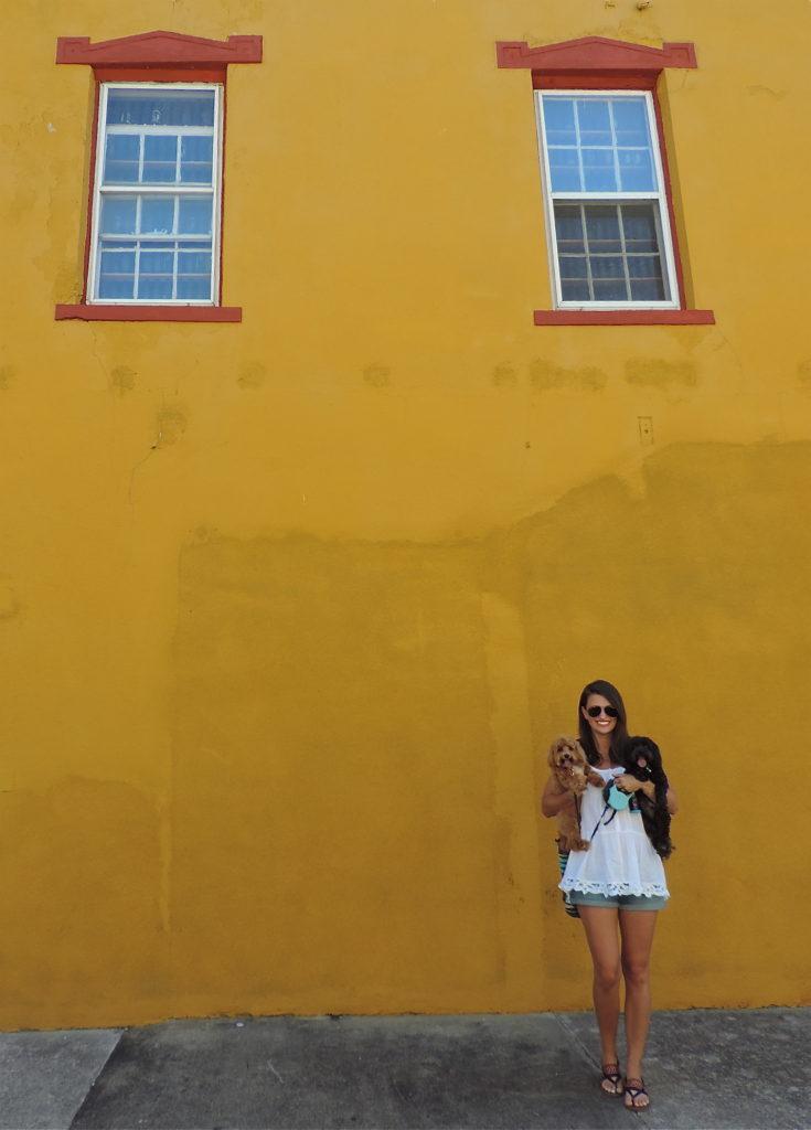 colorful-building-granville-ohio
