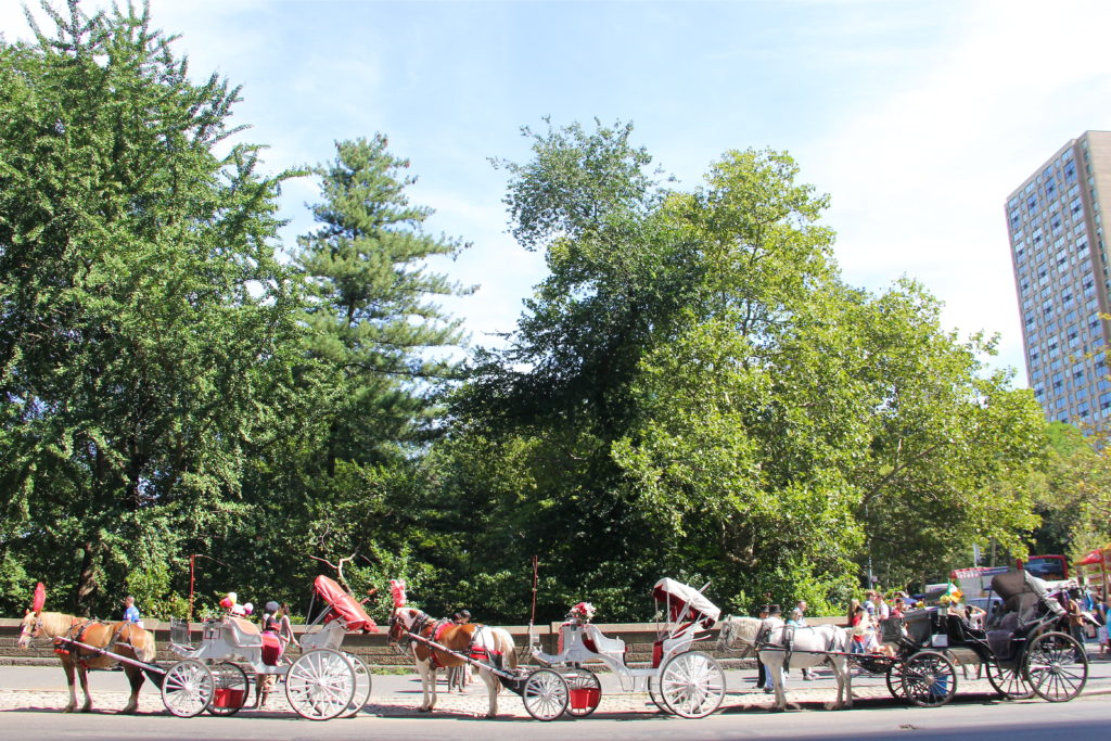 central-park-carriage-ride-new-york-city