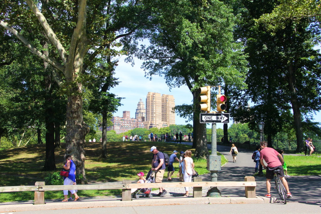 august-2015-central-park-new-york-city