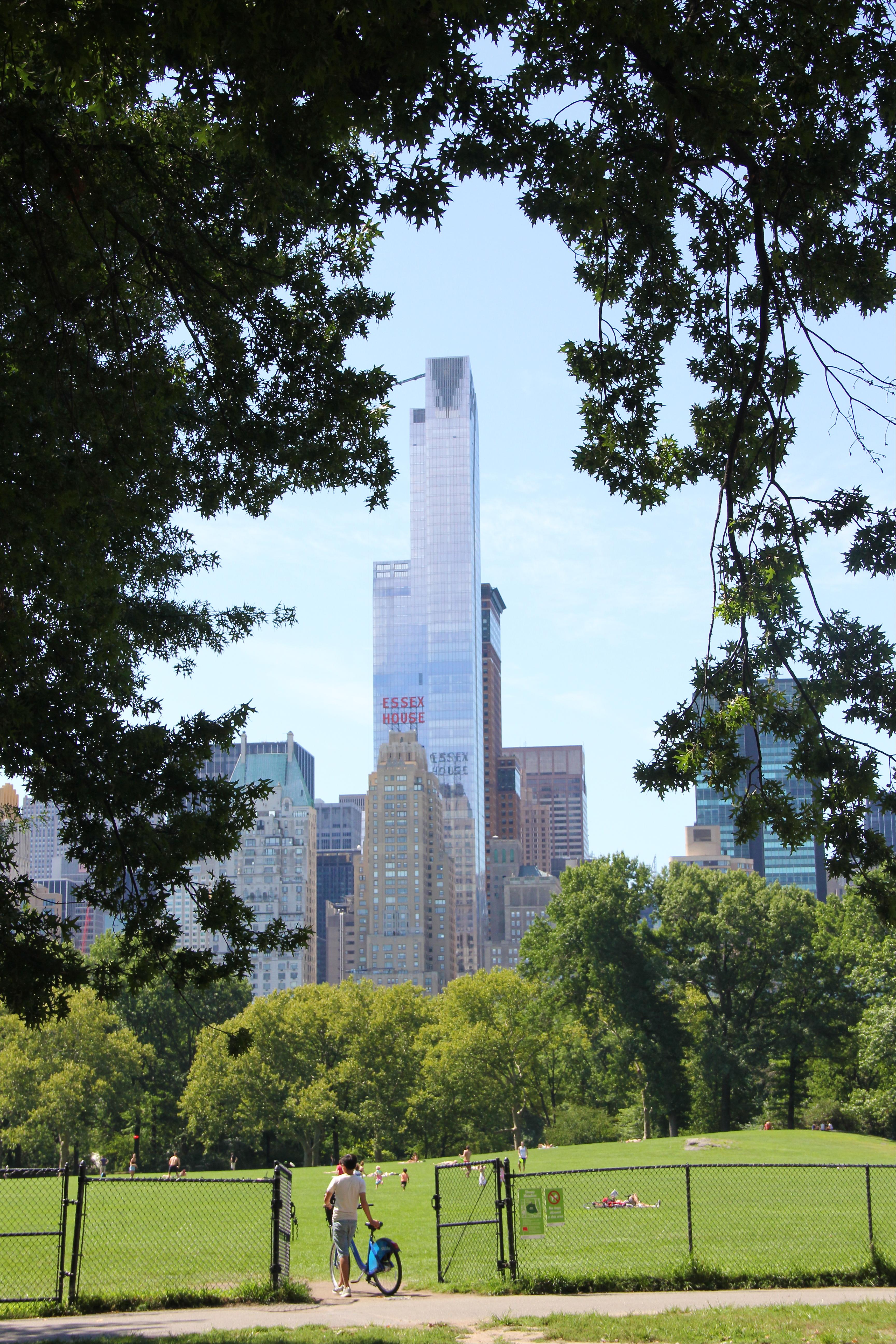 gorgeous-central-park-view