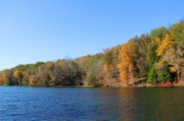 Rose Lake | Hocking Hills | girl about columbus