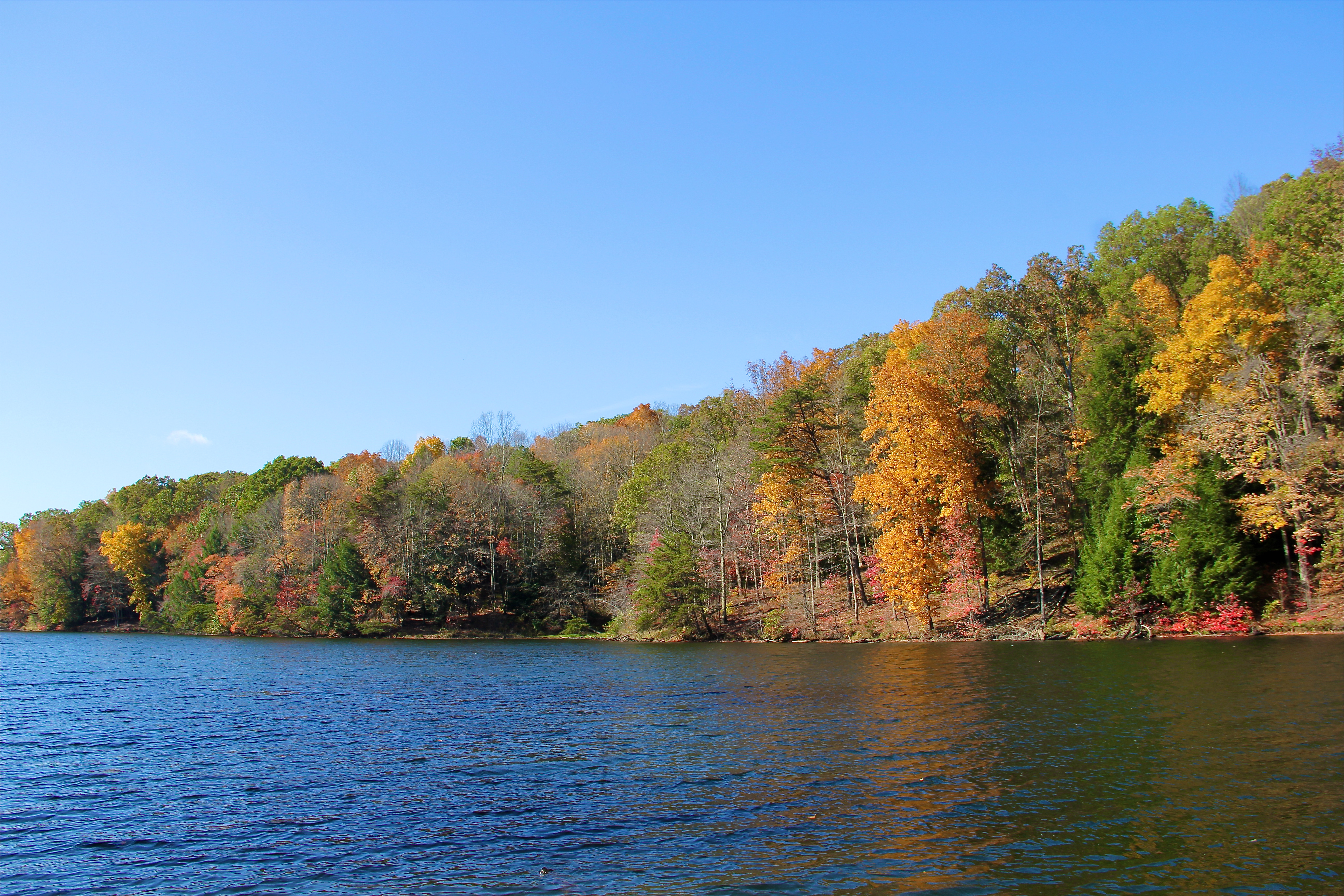 Rose Lake | Hocking Hills | girl about columbus