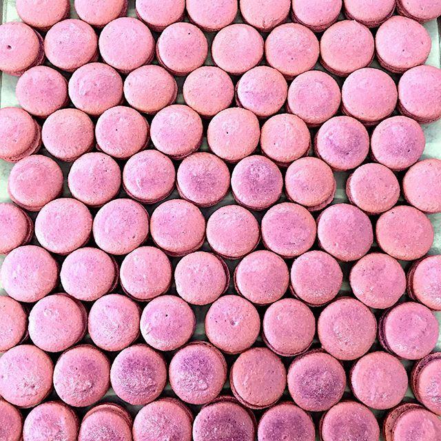 pistacia-vera-macarons