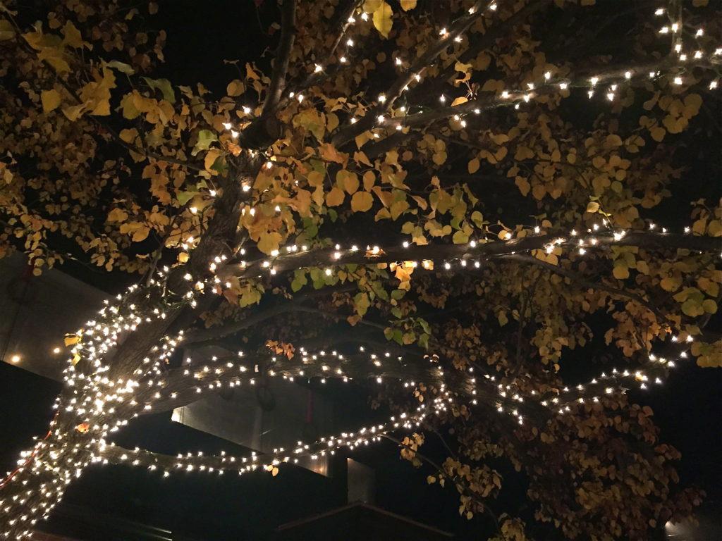 German Village Lights | girl about columbus