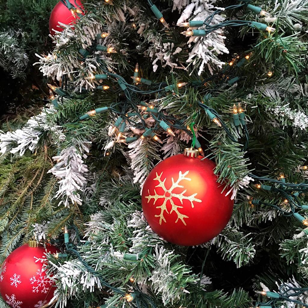 short-north-christmas