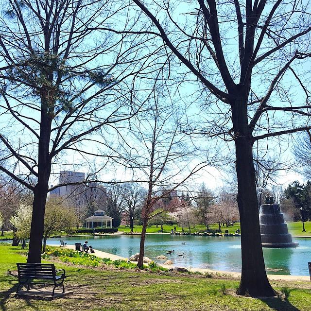 goodale-park-spring