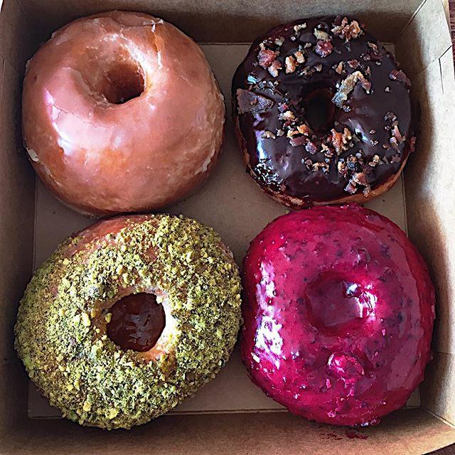 Life Lately: January // Destination Donuts