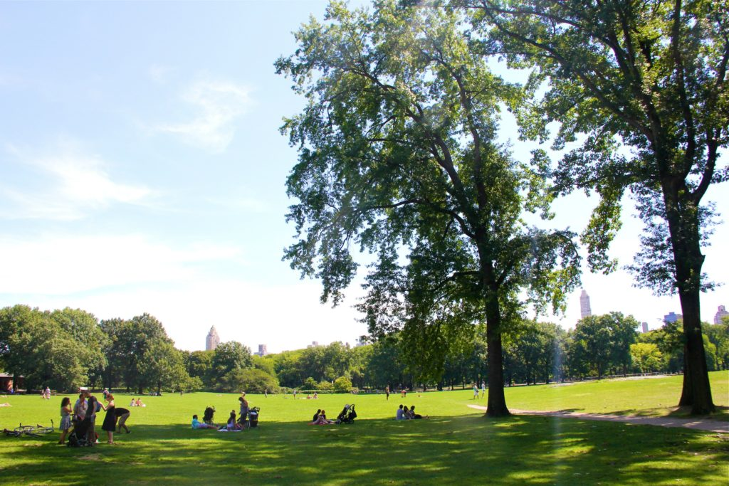 Summer-in-Central-Park-NYC