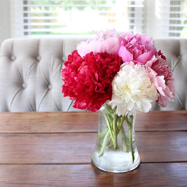 pretty-peonies
