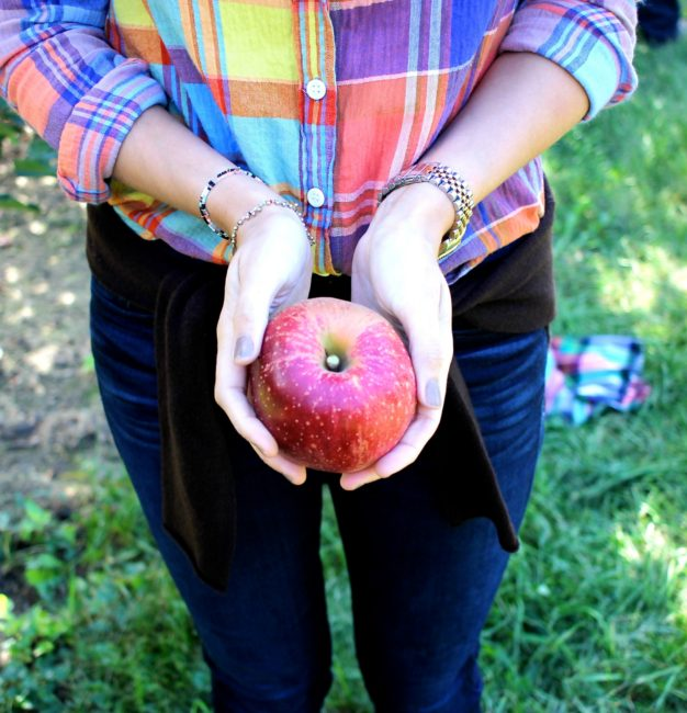 Where to Pick Apples in Central Ohio