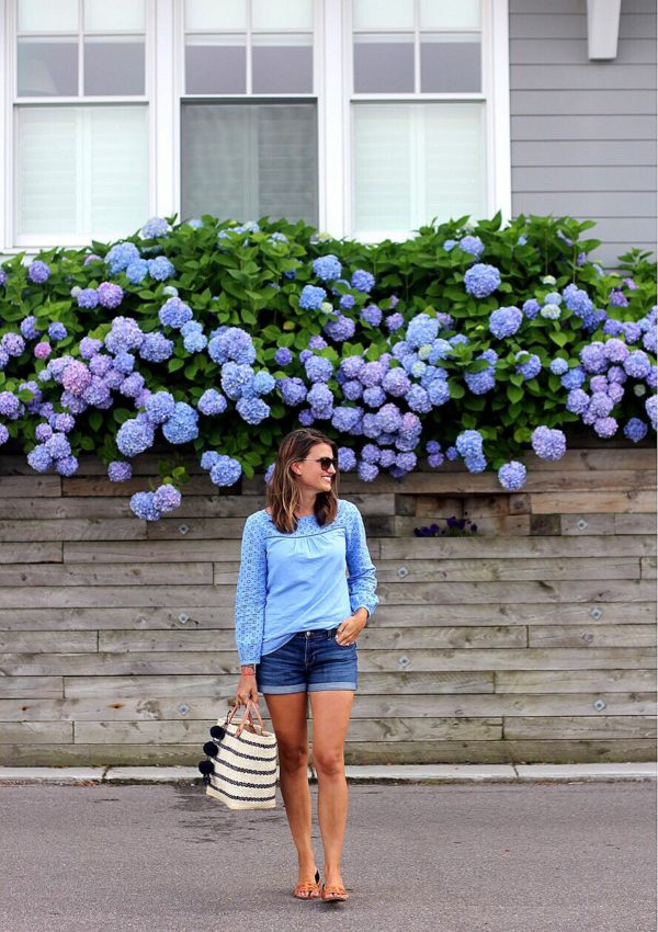 gorgeous hydrangeas!!