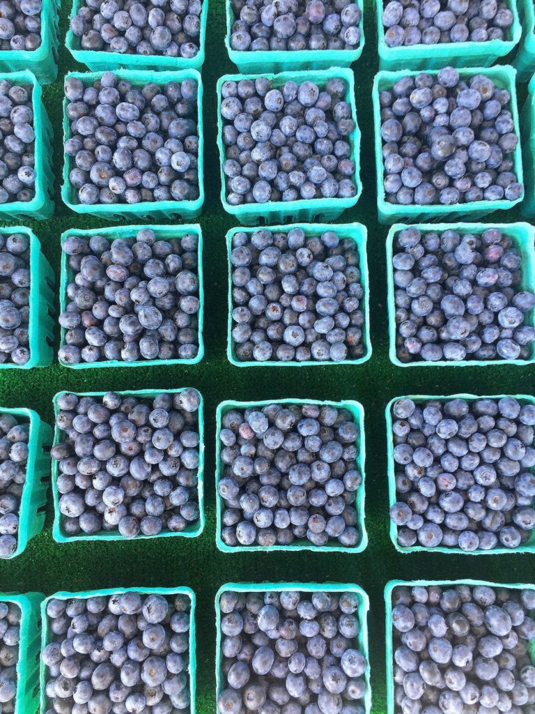 blueberries at holland farmers market in michigan