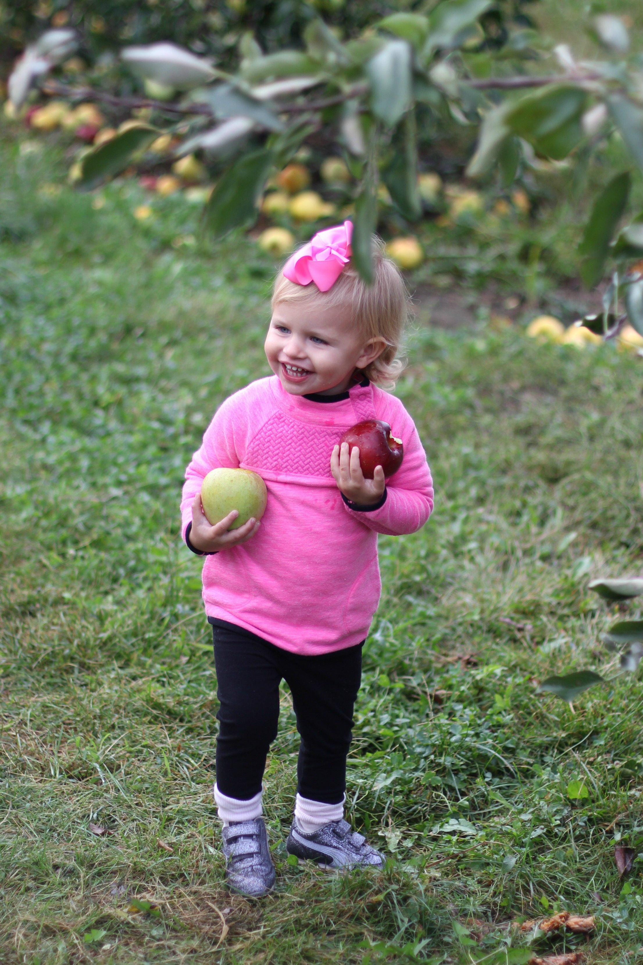 apple picking // girl about columbus