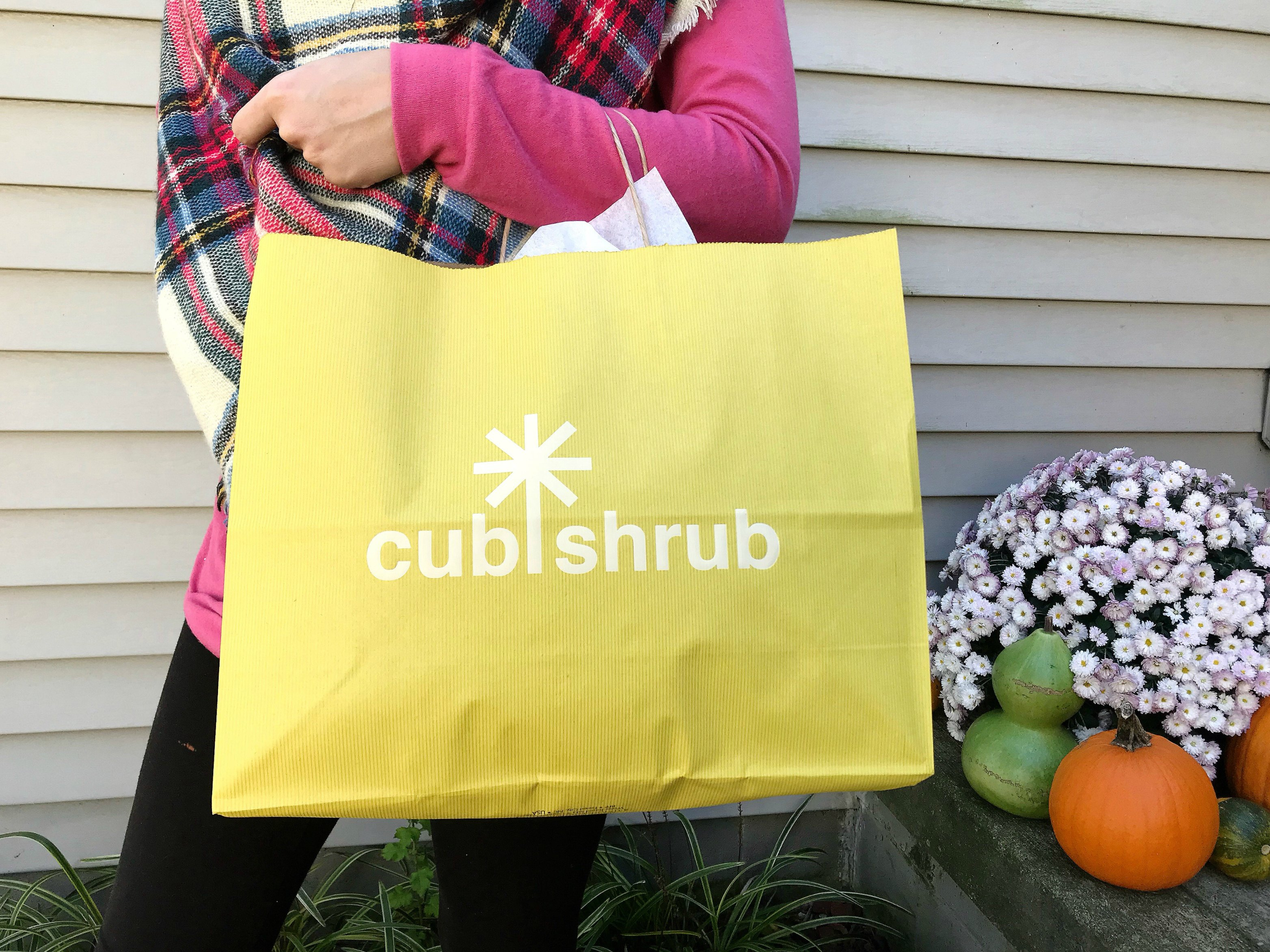 cub shrub // girl about columbus