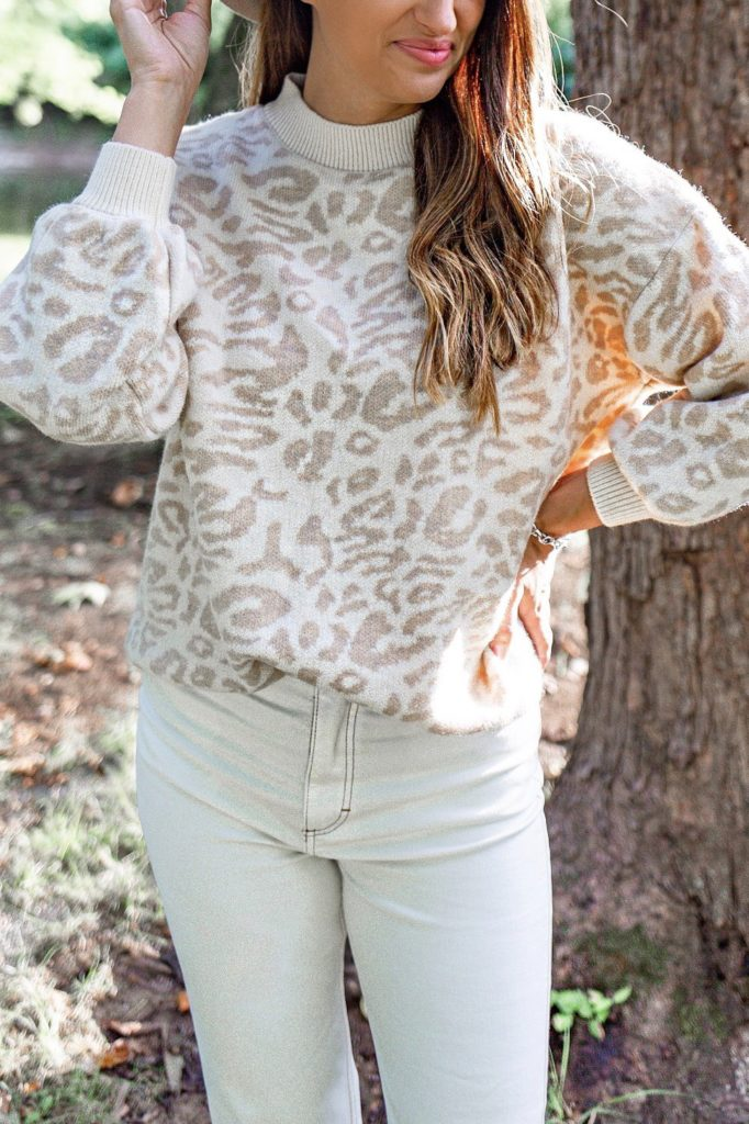 leopard-sweater-chicwish-fall-style